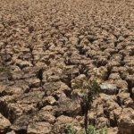 Prensa y cambio climático